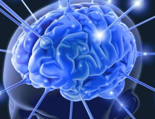Træn din hjerne med motion